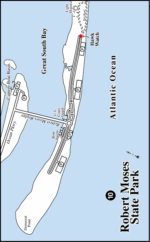 Robert Moses State Park NY Map By Luci Betti
